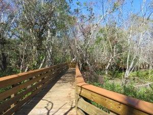 Boyd Hill Nature Preserve Boadwalk