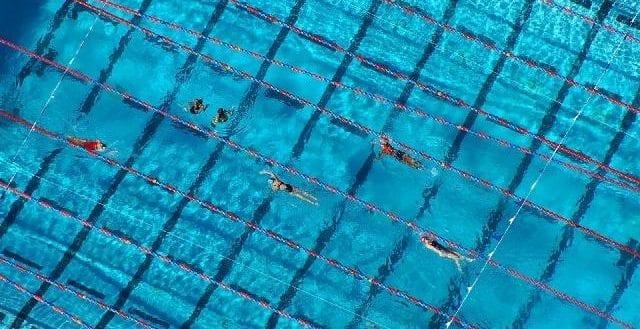 Tampa Bay Swim Classic