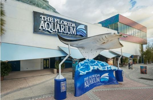The Florida Aquarium plan Sips Under the Sea