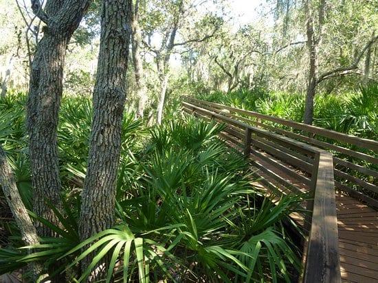 George C. McGough Nature Park