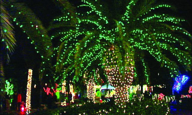 Destination Tampa Bay Holiday Lights