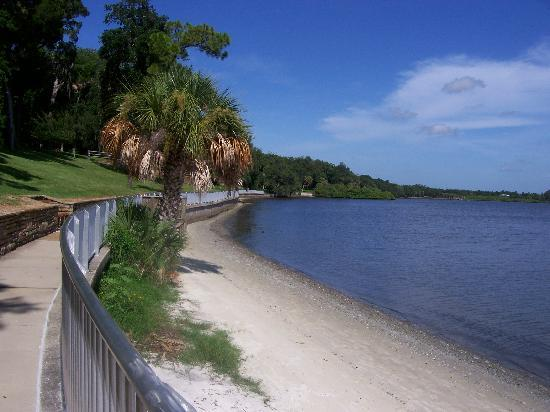 Phillippe Park in Safety Harbor